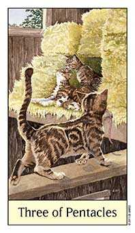 Three of Coins Tarot Card - Cat's Eye Tarot Deck