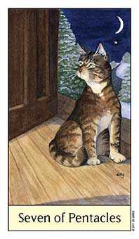 Seven of Coins Tarot Card - Cat's Eye Tarot Deck