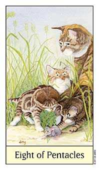 Eight of Coins Tarot Card - Cat's Eye Tarot Deck