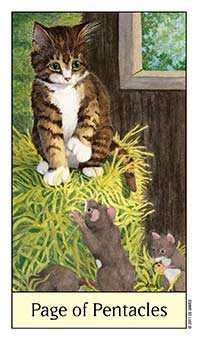 Valet of Coins Tarot Card - Cat's Eye Tarot Deck