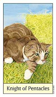 Cavalier of Coins Tarot Card - Cat's Eye Tarot Deck
