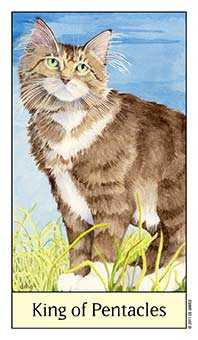 King of Discs Tarot Card - Cat's Eye Tarot Deck