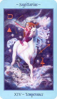 The Guide Tarot Card - Celestial Tarot Deck