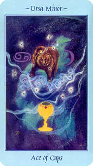 Ace of Cauldrons Tarot Card - Celestial Tarot Deck