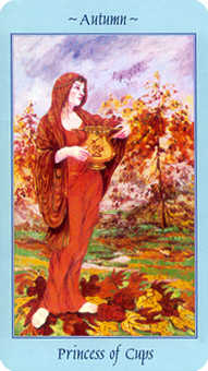 Page of Hearts Tarot Card - Celestial Tarot Deck