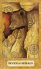 chrysalis - Seven of Wands