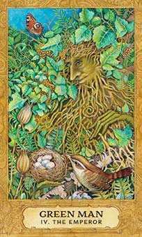 The Emperor Tarot Card - Chrysalis Tarot Deck