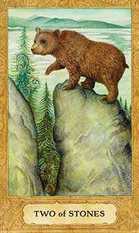 Two of Buffalo Tarot Card - Chrysalis Tarot Deck