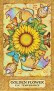 Temperance Tarot card in Chrysalis Tarot deck