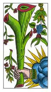 Ace of Pipes Tarot Card - Classic Tarot Deck