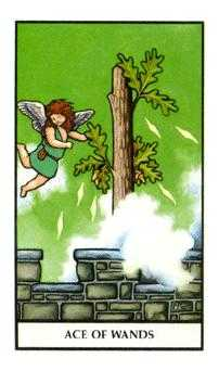 Ace of Wands Tarot Card - Connolly Tarot Deck