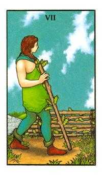 Seven of Staves Tarot Card - Connolly Tarot Deck