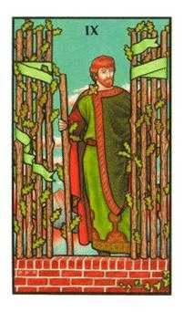 Nine of Sceptres Tarot Card - Connolly Tarot Deck