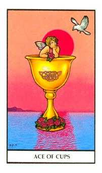 Ace of Water Tarot Card - Connolly Tarot Deck