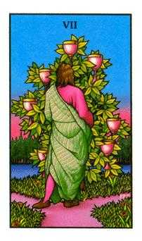 Seven of Hearts Tarot Card - Connolly Tarot Deck