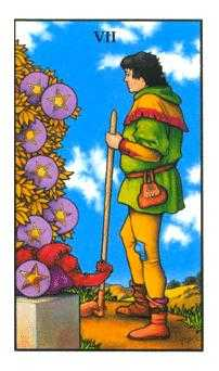 Seven of Coins Tarot Card - Connolly Tarot Deck