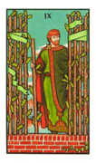 Nine of Wands Tarot card in Connolly deck