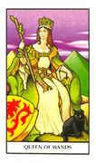 Queen of Wands Tarot card in Connolly deck