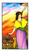 Five of Pentacles Tarot card in Connolly Tarot deck