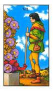 Seven of Pentacles Tarot card in Connolly Tarot deck