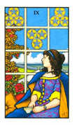 Nine of Pentacles Tarot card in Connolly deck