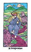Temperance Tarot card in Cosmic Slumber deck