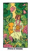 Page of Pentacles Tarot card in Cosmic Slumber deck
