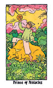 Knight of Pentacles Tarot card in Cosmic Slumber deck