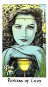 Princess of Cups Tarot card in Cosmic Tarot deck