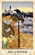Ace of Wands Tarot card in Crow Tarot deck