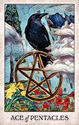 Ace of Pentacles Tarot card in Crow Tarot deck