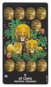Nine of Coins Tarot card in Crow's Magick Tarot deck