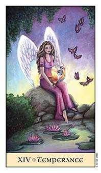 The Guide Tarot Card - Crystal Visions Tarot Deck