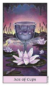 Ace of Ghosts Tarot Card - Crystal Visions Tarot Deck