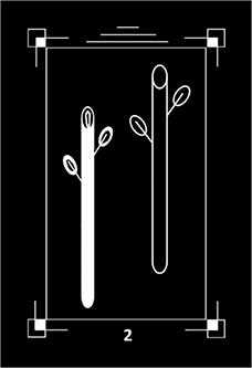 Two of Batons Tarot Card - Dark Exact Tarot Deck