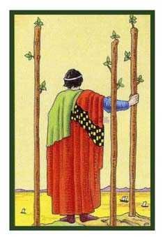 Three of Rods Tarot Card - Epicurean Tarot Recipe Cards Tarot Deck