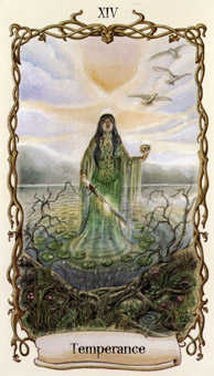 Temperance Tarot Card - Fantastical Creatures Tarot Deck