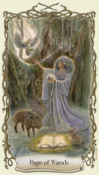 Page of Rods Tarot Card - Fantastical Creatures Tarot Deck