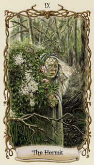 The Hermit Tarot Card - Fantastical Creatures Tarot Deck