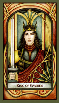Roi of Swords Tarot Card - Fenestra Tarot Deck