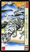 Ace of Swords Tarot card in Feng Shui deck