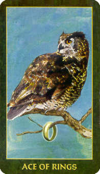 Ace of Rings Tarot Card - Forest Folklore Tarot Deck