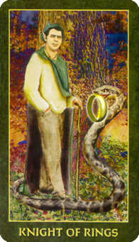 Knight of Buffalo Tarot Card - Forest Folklore Tarot Deck
