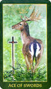 Ace of Swords Tarot card in Forest Folklore deck