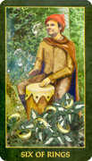 Six of Rings Tarot card in Forest Folklore deck