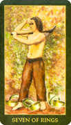 Seven of Rings Tarot card in Forest Folklore deck