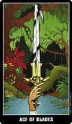Ace of Swords Tarot card in Fradella Tarot deck