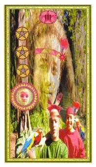 Three of Buffalo Tarot Card - Gendron Tarot Deck