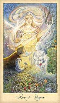 Ace of Cups Tarot Card - Ghosts & Spirits Tarot Deck