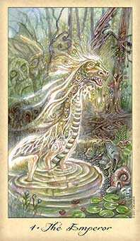 The Emperor Tarot Card - Ghosts & Spirits Tarot Deck